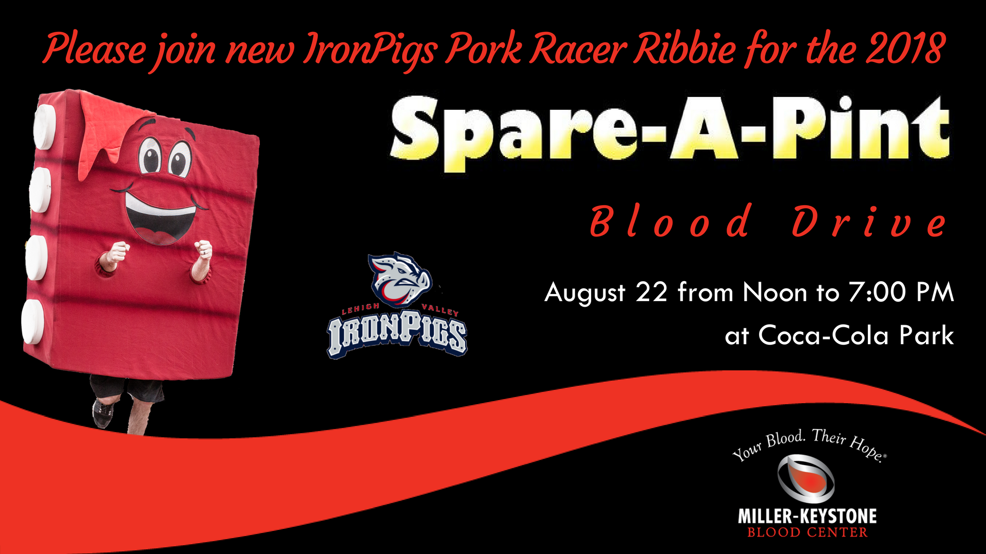 "Lehigh Valley IronPigs ""Spare A Pint"" Blood Drive"
